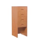 Шкаф для читательских формуляров 430-490-1150